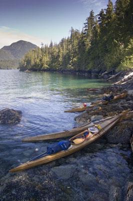 Seawolf Expedition To Kyuquot Sound Seawolf Kayak