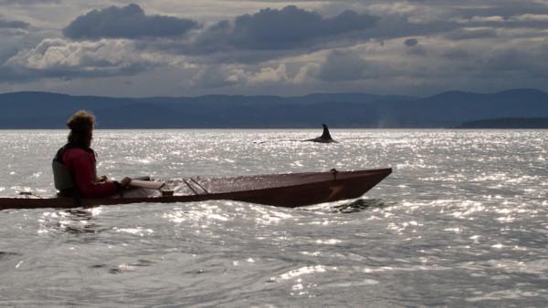 ORCAS-018